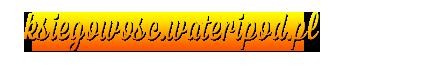 Usługi księgowe i doradztwo podatkowe - http://ksiegowosc.wateripod.pl/